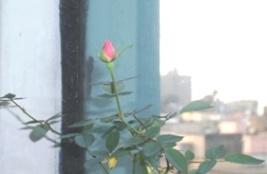 ros 1
