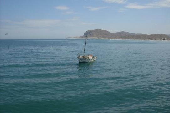 Barca sola